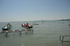 A Balaton nyugati részén tömegesen megjelentek a kékalgák a vízfelszínen