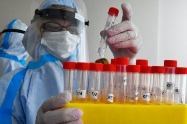 Délnyugat-szlovákiai a legtöbb fertőzött, akadt a Dunaszerdahelyi és a Komáromi járásokban is
