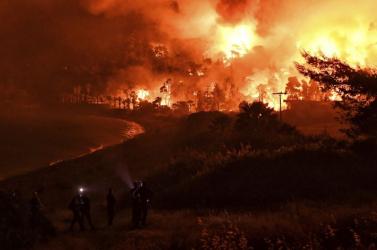 Több mint 100 ezer hektár terület égett le Görögországban két hét alatt