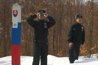 Csecseneket kaptak el a zsaruk az erdőben