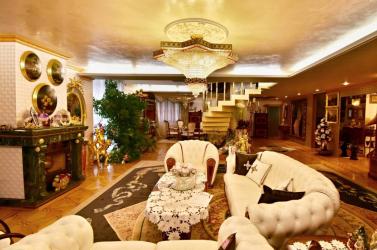 Tigris a kád alatt, arany mindenütt – eladó Rezešék luxusvillája (FOTÓK)
