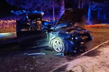 SZÖRNYŰ BALESET: Fának csapódott a fiatalokkal teli Audi, egy 17 éves srác életét vesztette