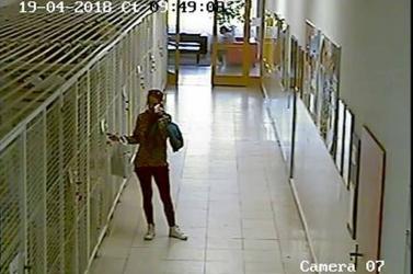 Ez a nő feltehetően csúnyán meglopta a dunaszerdahelyi egészségügyi diákjait!