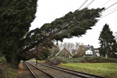 Heves szélvihar vonult át Csehországon, több tízezer háztartás maradt áram nélkül