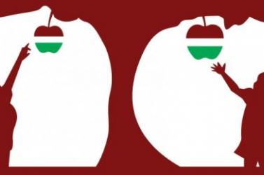 A Rákóczi Szövetség magyar óvodások családjait keresi fel Kárpátalján, hogy magyar iskolát válasszanak