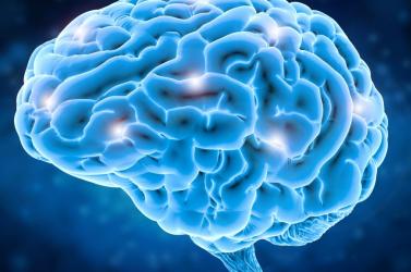Azonosították a Parkinson-kór legkorábbi jeleit az agyban