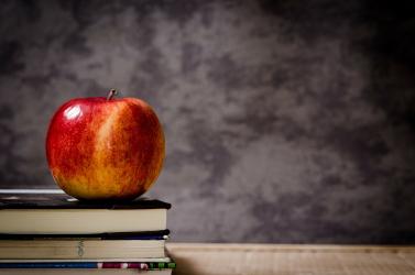 Négyezer éves almára bukkantak (FOTÓ)