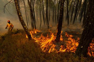 Önkéntes tűzoltókat vádolnak az amazonasi erdő felgyújtásával