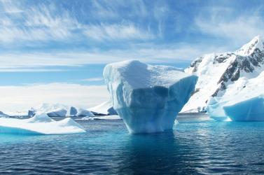 A sarkvidéki tengerek planktonjai kevésbé képesek alkalmazkodni a klímaváltozáshoz