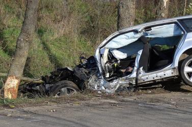 SZÖRNYŰ: Fának rohant apja kocsijával, életét vesztette egy 13 éves fiú