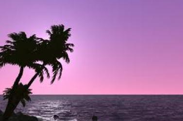 Az állam költségén utaztak Hawaiira az SNS emberei