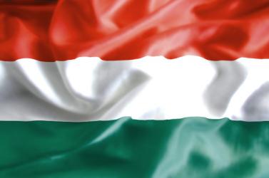 Ficoék magyar zászlókkal bohóckodtak a parlamentben