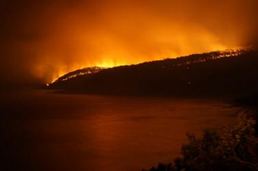 Sztárok és hírességek fogtak össze az ausztrál bozóttüzek áldozataiért