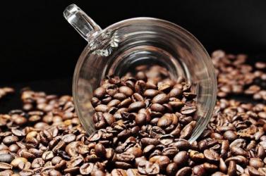 Egy újra felfedezett kávéfaj segítheti a termesztőket a klímaváltozás elleni küzdelemben