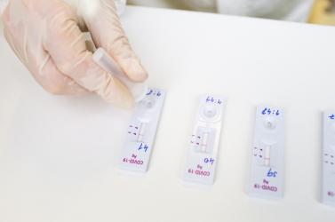 Több száz használt antigéntesztet találtak a szemétben, le kellett zárni a hulladékszelektáló üzemet