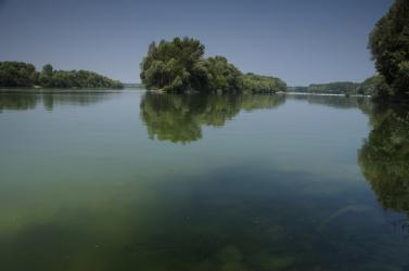 Indul az Öreg-Duna ágrendszerének tavaszi elárasztása!