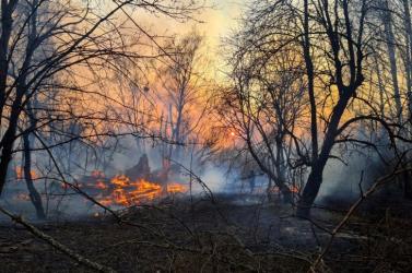 Nem nőtt Szlovákiában a háttérsugárzás a csernobili erdőtűz miatt