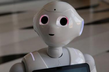 Élő sejtekből építettek robotot amerikai kutatók
