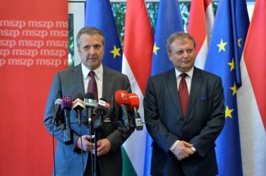 Molnár Gyulát választották meg az MSZP elnökének