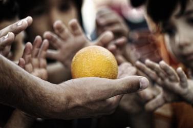 Egyre többen éheznek a világon