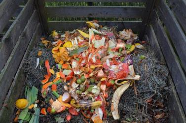 Változik a konyhai hulladék begyűjtése Érsekújvárban