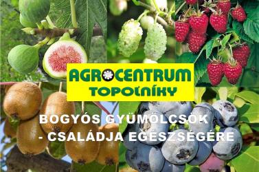 Tavaszi vásár aNyárasdi AGROCENTRUM-ban!