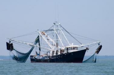 Egynapos gyászt hirdettek a tengerbe fúlt orosz halászok tiszteletére