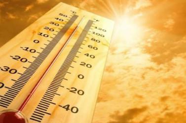 Feltűnően sokan haltak meg Németországban a 2018-as nyári rekordmeleg idején