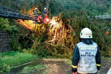 Tirolban 1300 hektárnyi erdő pusztult el az ítéletidő miatt