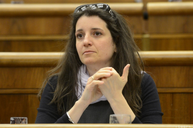 Žitňanská nem indul a következő EP-választáson