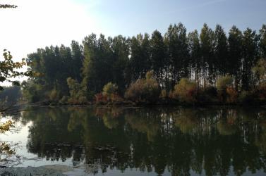 Idén is lehetőség nyílik közhasznú projektek megvalósítására a Duna és a Kis-Duna mentén