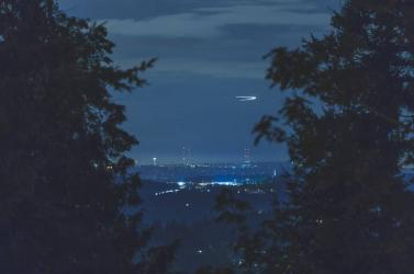 Rejtélyes gömb száguldott az erdőben (videó)