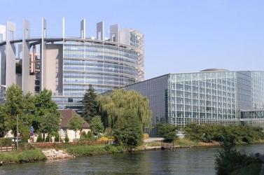 Szlovákiai gazdák mennek tanúskodni az Európai Parlamentbe
