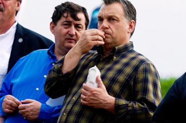 Az Együtt-PM is kíváncsi a gázszerelőből lett felcsúti milliárdos, Mészáros Lőrinc vagyonnyilatkozatára