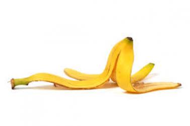 Anti-Nobel-díj: a banánhéj csúszósságának és a rénszarvasok ijedősségének vizsgálata? Na nee!
