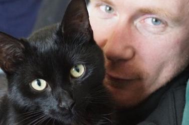 Letöltendő börtönt kapott a macskákat szórakozásból gyilkolászó biztonsági őr