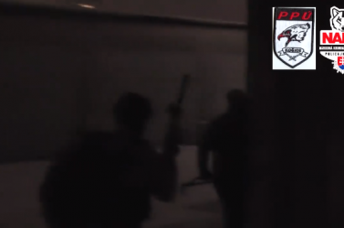 Rendőrségi akció: nagyszabású fegyverkereskedő csoportra csapott le a NAKA (videó)