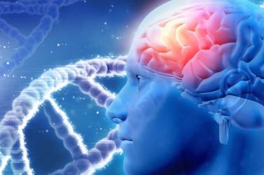Implantátum javíthatja a Parkinson-kórban szenvedők mozgását