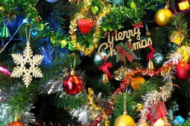 Így karácsonyozott Róza, a makákóbébi!