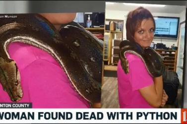 Kockás piton fojtott meg egy nőt egy kígyókkal teli házban!