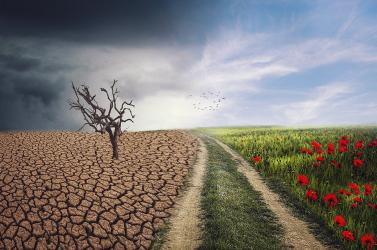 A metángáz kibocsátásának csökkentése rövid távon kulcsfontosságú a klímaváltozás elleni harcban