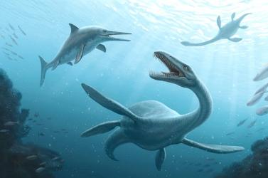 Százötvenmillió éves óriás tengeri hüllő maradványira bukkantak az Antarktiszon