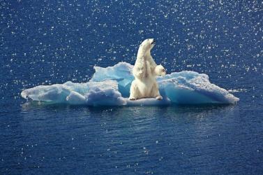 Soha nem húzódott olyan gyorsan vissza az észak-sarki tengeri jég, mint 2020 nyarán