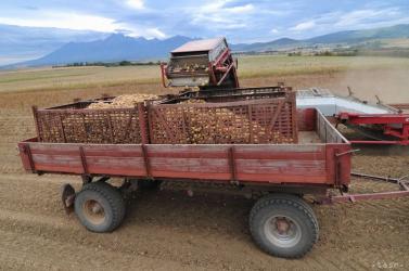 A traktor pótkocsija sebesített meg egy 11 éves kisfiút