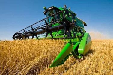 Az OLAF vizsgálja a szlovákiai olasz maffia EU-s agrártámogatási csalásait