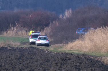Fejbe lőtte társát egy vadász a Siófoki járásban