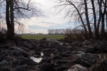 Okoličány jobbkezének holttestét is keresték Dunatőkésnél?