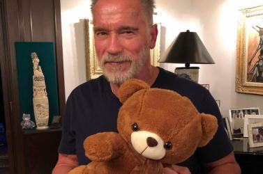 Schwarzenegger és Banderas mackóira is lehet licitálni Budapesten