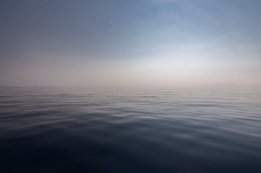 Eltolódott az Atlanti-óceán szénpumpája a klímaváltozás miatt, arrébb költöznek az élőlények