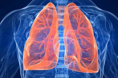 Elhagyhatta a kórházat az első magyarországi tüdőátültetésen átesett férfi